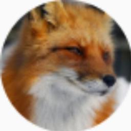 tfox_alex_voronin