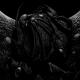 oblique's avatar