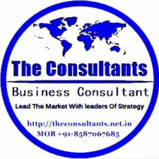 Business Consultant | Political Consultant @ http://theconsultants.net.in