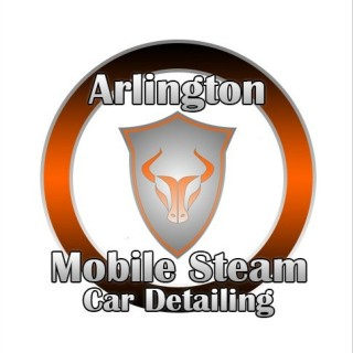 Arlington Mobile Steam Car Detailing