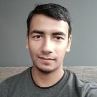 Mohd Saqueib Ansari