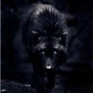 BlackWolf063