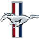 zivadira's avatar