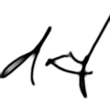 Avatar for dayletter from gravatar.com