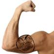 Bicepsrage