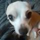 View ZeronNTheXeon's Profile