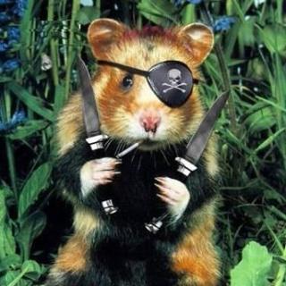 Jack Hamster