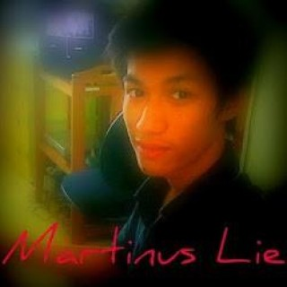 Martinus Lie