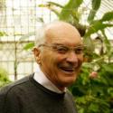 avatar for Jorge Paiva