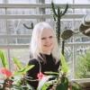 nataliaraben's picture