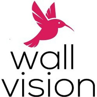 WallVision