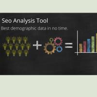 Avatar of Seo Analysis Tool