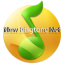 New Ringtone 2021