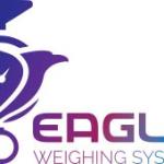 Eagle Scales