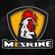 Nativ_MeSrine