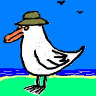 cgull