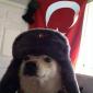Avatar Of Emir