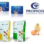 Promois International