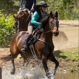 EquestrianTraining.com