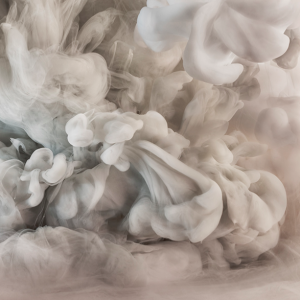 Profile picture for Kim Keever