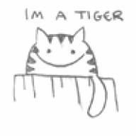 TigerVI
