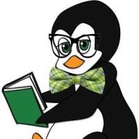 Review Penguin Parade Philip Island Enclosed
