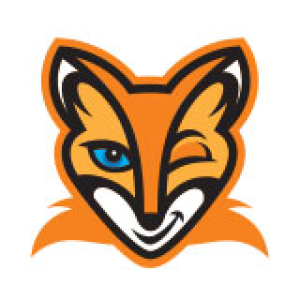Digital Fox Talent