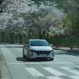 Avatar for Kanhaiya Vishvakarma
