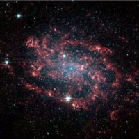 Avatar of Adam Fell