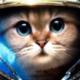 abija's avatar