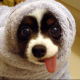 mullen1200's avatar