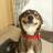 Flay1's avatar
