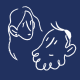 https://secure.gravatar.com/avatar/d26c64de1b1938242618ac57d0ea014e?s=80&r=g