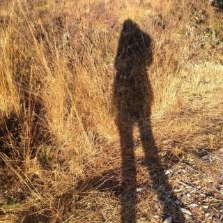 Aus aller Welt - Blog | Laura