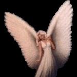Maria Schloer's profile picture