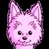 Carla R. Herrera