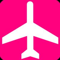 Pink Traveler