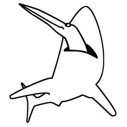 sharkbird