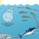 ProjectErik's avatar