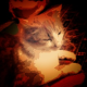 Tojaw's avatar