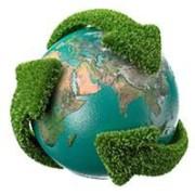 Foto de Redação Planeta Biologia