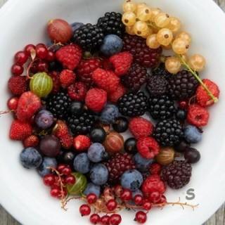 De Fruitberg
