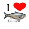 Salmon_Dude