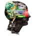 greye's avatar