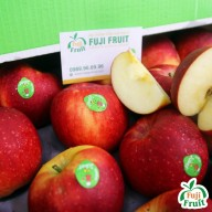 fujifruit