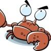 crabdude