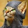KnightCat