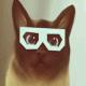 AlexMerser21's avatar