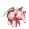 Elephant42's Photo
