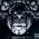 blujay's avatar